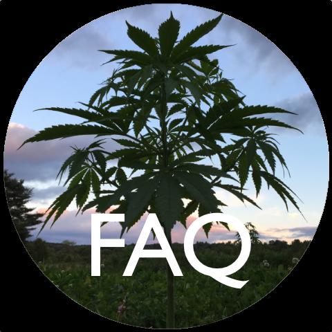 Bravo Botanicals FAQ